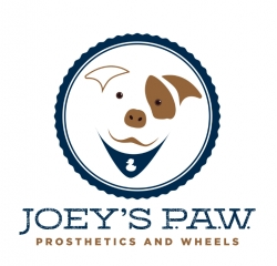 Joey's P.A.W. Helps Over 60 Special Needs Dogs in One Year