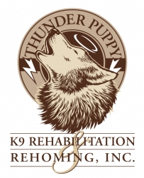 Thunder Puppy K9 Rehabilitation And Rehoming Only Remaining