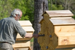 On Tuesday, October 23rd, the Shape of Honey Bee Hives Will Change Forever