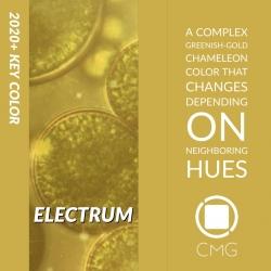 Color Marketing Group Announces 2020+ North American Key Color – Electrum
