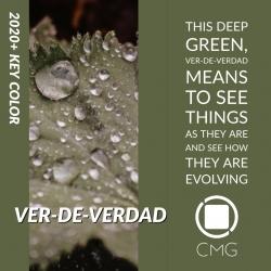 Color Marketing Group Announces 2020+ Latin American Key Color – Ver-de-verdad