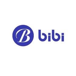 BIBI LED Presents One of Its Most Professional Export Teams