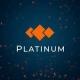 Platinum LLC