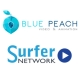 SurferNETWORK LLC