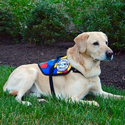 $10,000 SDWR Autism Service Dog Grant Awarded to 8-Year-Old Boy in Deer Park, WI