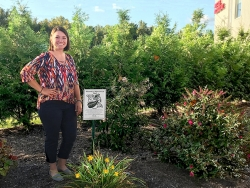 Process Technology Garden Designated as Monarch Waystation Habitat