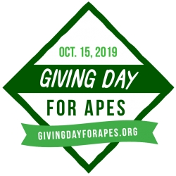 Global Federation of Animal Sanctuaries Presents Sixth Annual Giving Day for Apes October 15, 2019