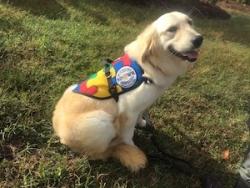Autism Service Dog Delivered by SDWR to Family in Valdez, Alaska