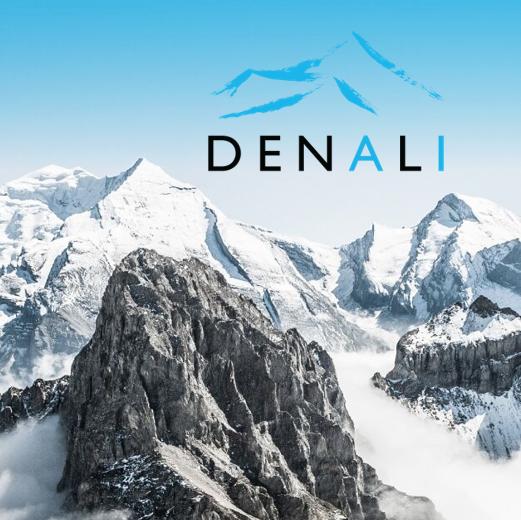 Cisco Names Denali Advanced Integration Enterprise & Service Provider Partner of the Year