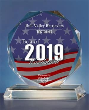 Bull Valley Retrievers Receives 2019 Best of Woodstock Award - Dog Trainer