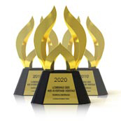 Best Advertising Website of 2020 to be Named by Web Marketing Association in 24th Annual WebAward Competition