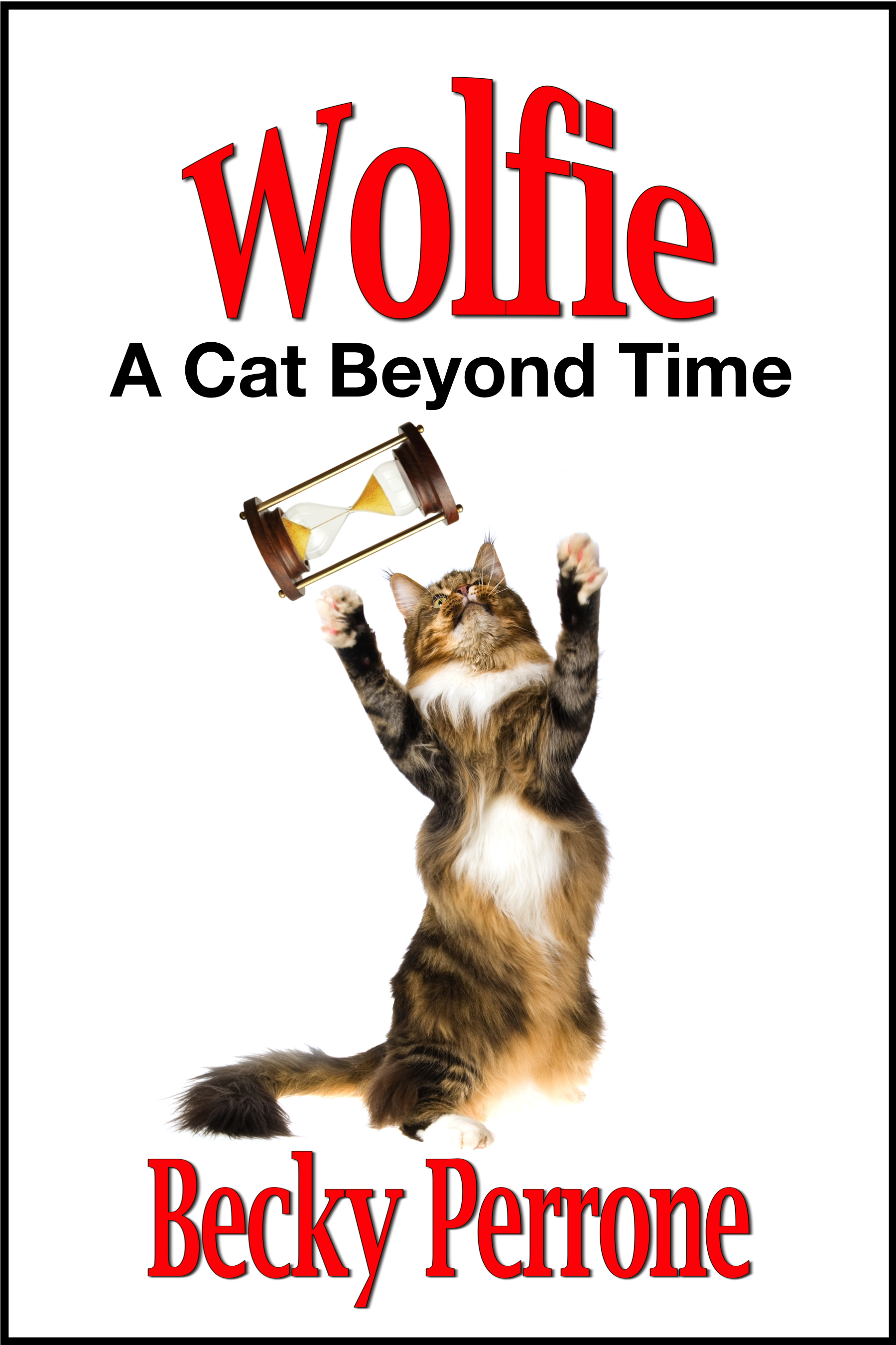 Escarpment Press to Release New YA Book About a Time-Traveling Cat