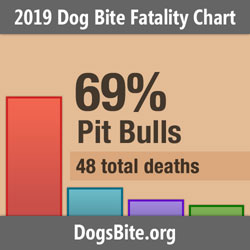 Nonprofit Releases 2019 Dog Bite Fatality Statistics - Attacks and Adult Victims Rise and Trends from the 15-Year Data Set