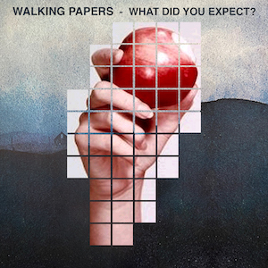 Walking Papers New Single