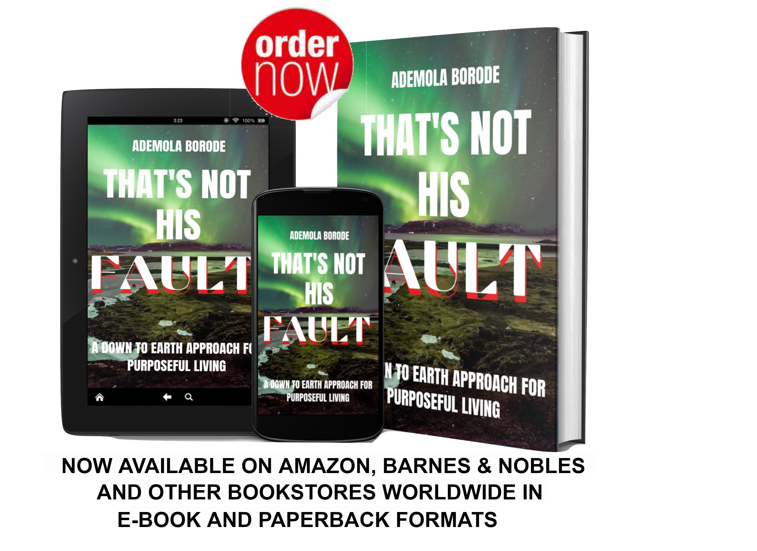 """A Frank and Bold New Book on Purposeful Living """"That's Not His Fault: a Down to Earth Approach for Purposeful Living"""""""