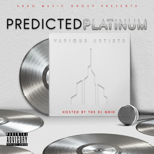 Grammy-Nominated, Multiplatinum Producer