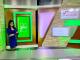 Sarina Fazan Media