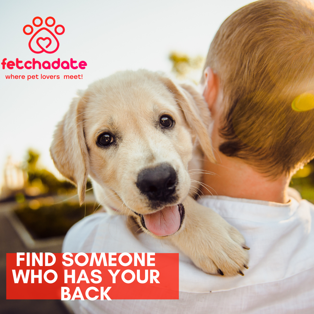 Use Your WingPet to Get Dates Online: FetchaDate - Where Pet Lovers Meet