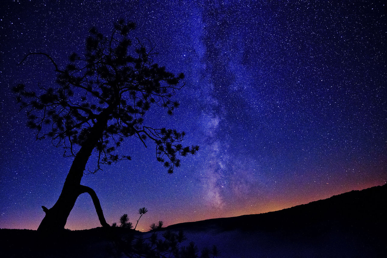 """Potter-Tioga Counties' Cherry Springs State Park Ranked as One of """"Nation's Finest Stargazing Spots"""""""