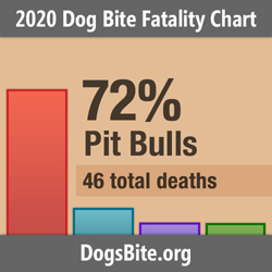Nonprofit Releases 2020 Dog Bite Fatality Statistics - Attacks by Bull Breeds Increase and Trends from the 16 Year Data Set
