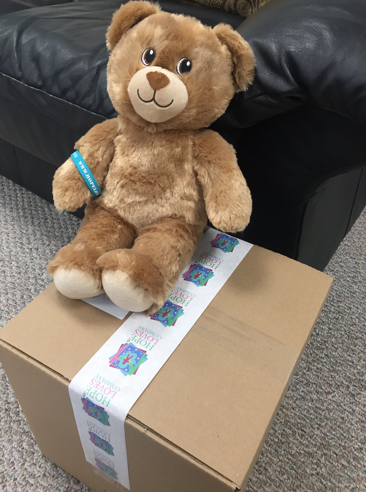 Maddyloo is Hope Loves Company's First Hug of Hope Care Package Sponsor: California Business Sponsors Care Packages for ALS Children Caregivers
