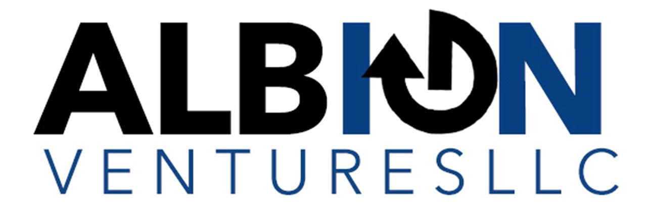 Leading Technology Advisory and Systems Integrator Albion Ventures Names President and CEO