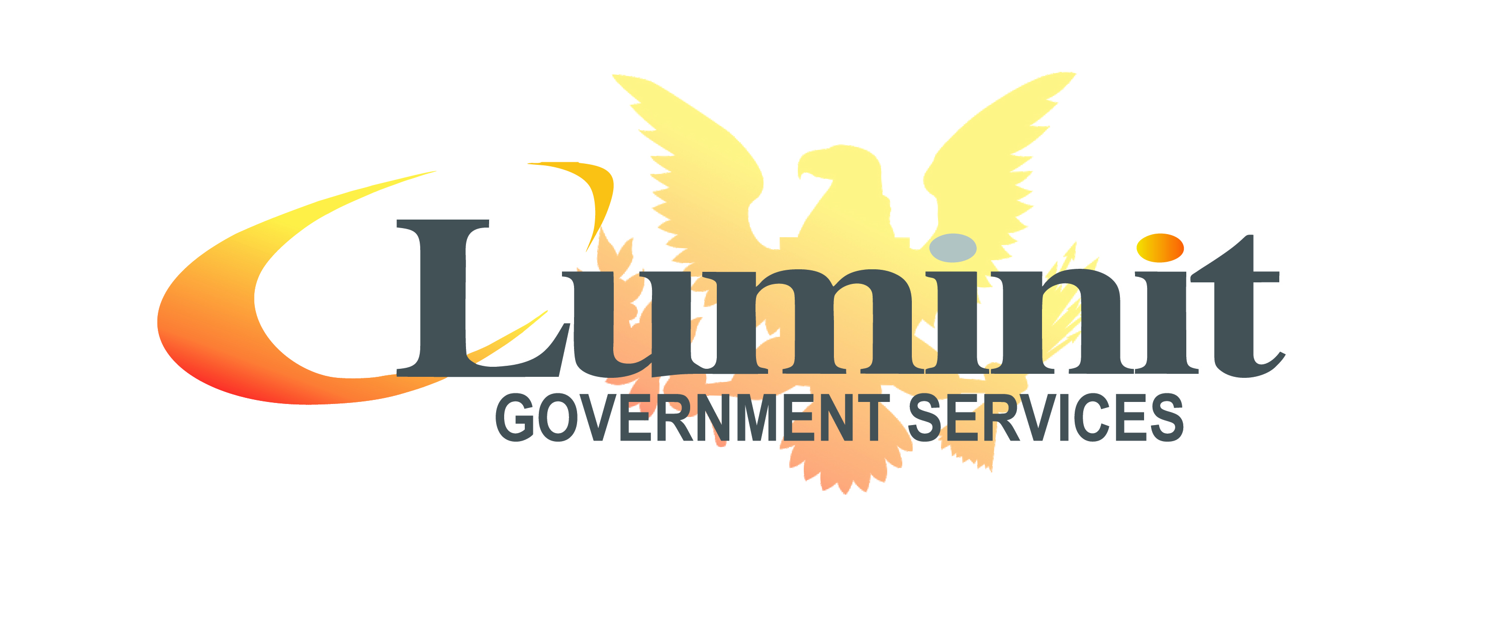 Luminit Government Services Gains Several SBIR Wins