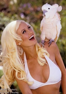 holly madison pictorial