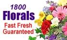 Phillip's Flowers ~ 1-800-FLORALS Florist