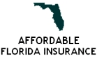 Affordable Florida Insurance