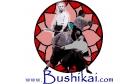 Bushikai Martial Arts