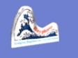 Bayphase Ltd