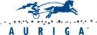 Auriga, Inc.