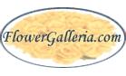 FlowerGalleria.com