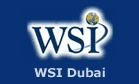 WSI Dubai Internet Consulting and Education