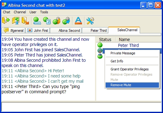 Radmin 3 - Text Chat Main Window Image