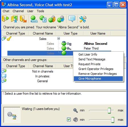 Radmin Server 3 - Voice Chat Main Window Image