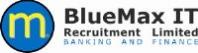 BlueMax IT Recruitment History