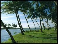 Holiday Kerala History