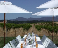 Wine Country PlanIt History