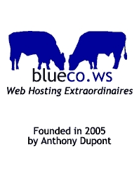 BlueCo Web Site Hosting