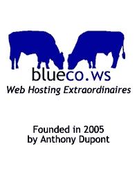 BlueCo Web Site Hosting History