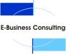E-Business Consulting History