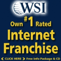 WSI Internet Overview