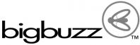 BigBuzz Communications Overview