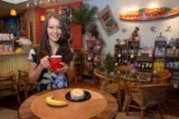 Maui Wowi Hawaiian Coffees & Smoothies Overview
