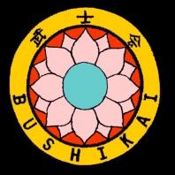 Bushikai Martial Arts Overview