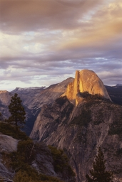 Y explore Yosemite Adventures Overview