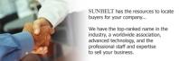 Sunbelt Business Advisors - Southeast Michigan Overview