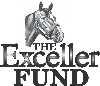 Exceller Fund